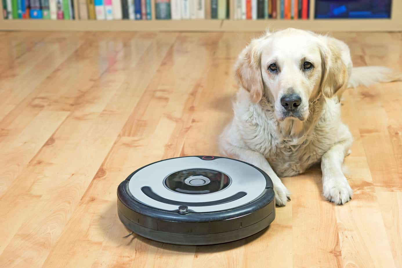 Best Bagless Vacuum for Pet Hair (Updated for 2021)