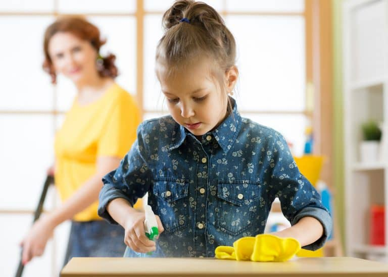 Simple Ways to Reduce Dust In Your House